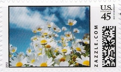 Z45HM12flower002