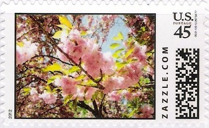 Z45HM12flower007