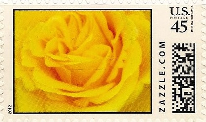 Z45HM12flower009