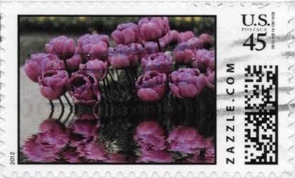 Z45HM12flower011