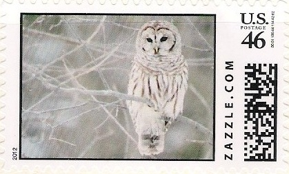 Z46HM12owl001