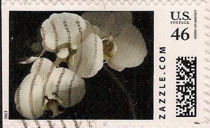Z46HM13flower006