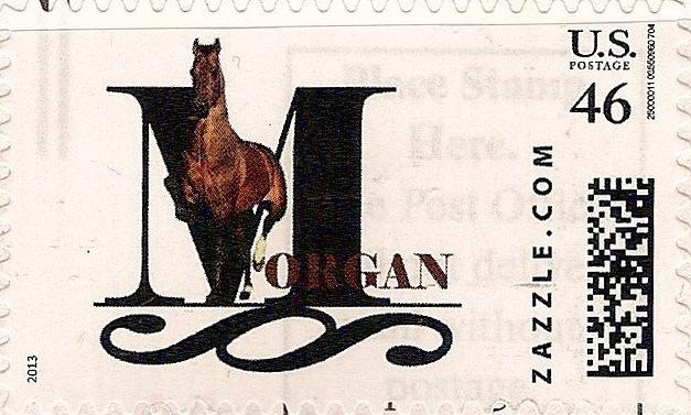 Z46HM13morgan001