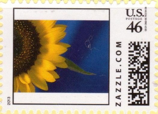 Z46HS13flower002