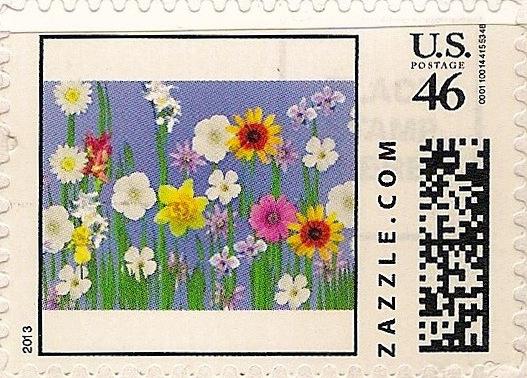 Z46HS13flower003