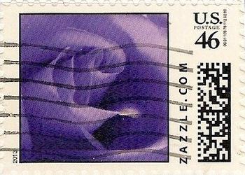Z46HS13flower004