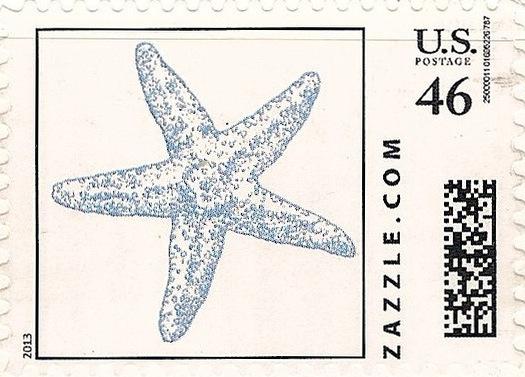 Z46HS13starfish001