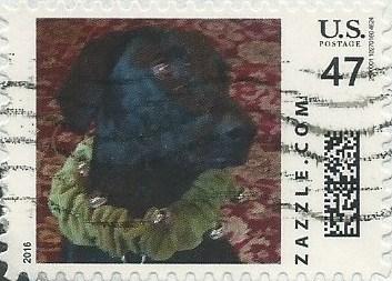 Z47HS16dog003