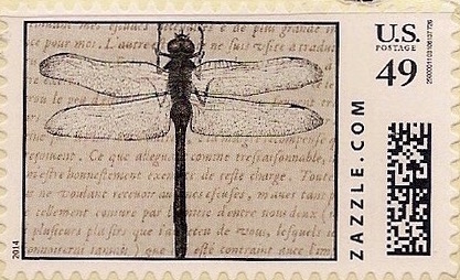Z49HM14insect001