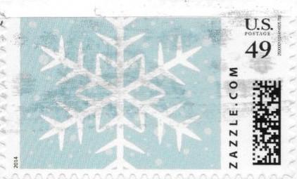 Z49HM14snowflake001