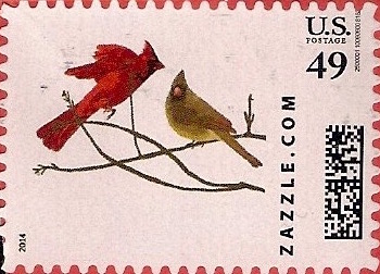 Z49HS14bird002
