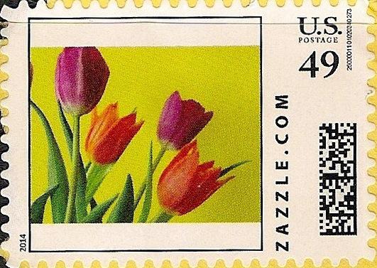 Z49HS14flower001