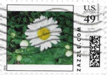 Z49HS14flower003