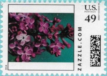 Z49HS14flower006