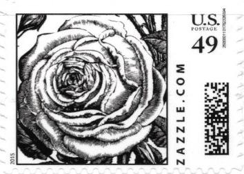Z49HS15flower002