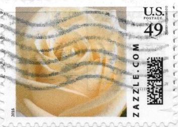 Z49HS16flower001