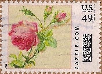 Z49HS16flower005