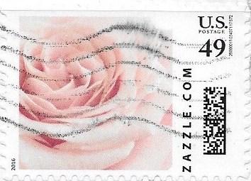 Z49HS16flower006