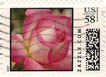 Z58HS07flower002