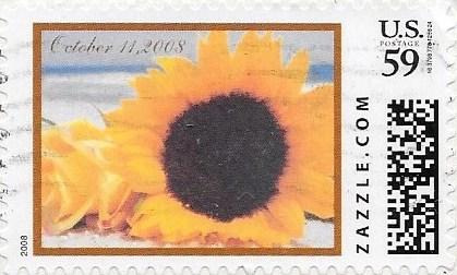 Z59HM08flower005