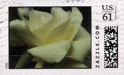 Z61HM09flower001