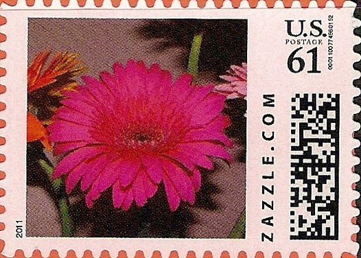 Z61HS11flower001