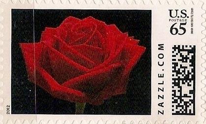 Z65HM12flower001