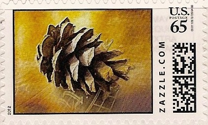 Z65HM12pinecomb001