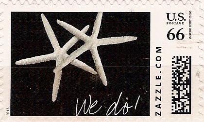 Z66HM13wedo001