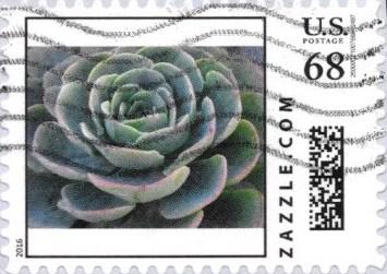 Z68HS16flower001