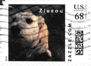 Z68HS16zissou001