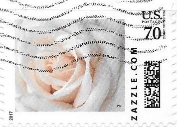Z70HS17flower001