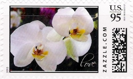Z95HM10flower001