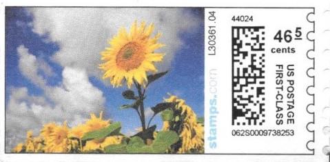 sdc-1704A-V13-46.5