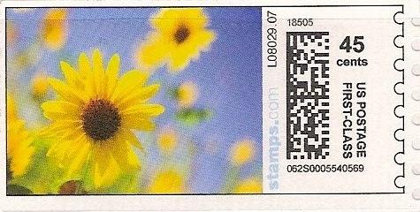 sdc-1704B-V13-45