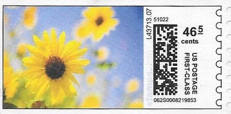 sdc-1704B-V13-46.5