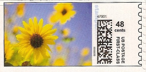 sdc-1704B-V1A-48