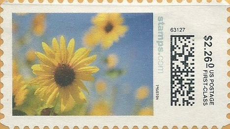 sdc-1704B-V20-226.0