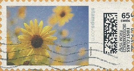 sdc-1704B-V20A-65.0