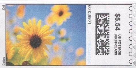 sdc-1704B-V3-554