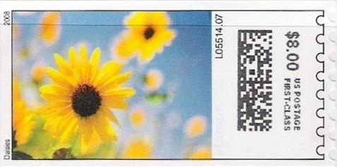 sdc-1704B-V3-800