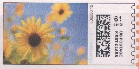 sdc-1704B-V4-61