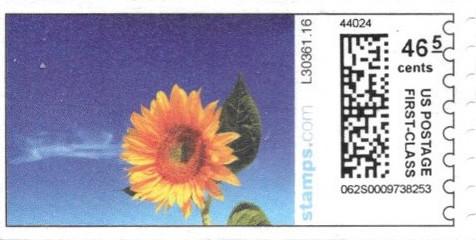 sdc-1704C-V13-46.5