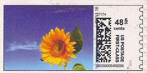 sdc-1704C-V13-48.5