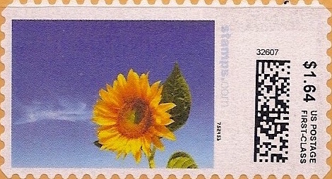 sdc-1704C-V20-164