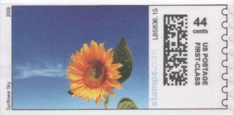 sdc-1704C-V3-44