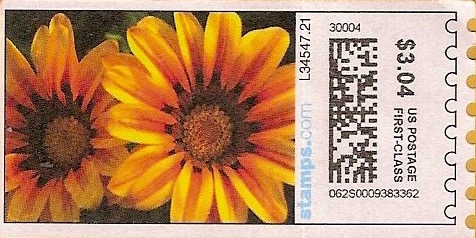 sdc-1704D-V13-304