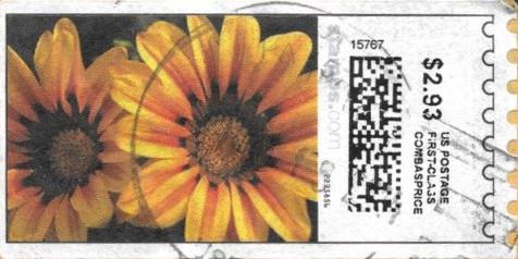 sdc-1704D-V13C1-293
