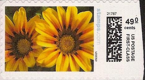 sdc-1704D-V20-49.0