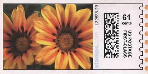 sdc-1704D-V4-61